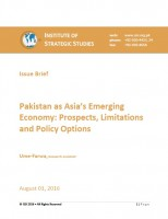 Issue Brief on Pakistan as Asia's Emerging Economy: Prospects, Limitations and Policy Options
