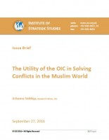 Issue Brief The Utility of the OIC in Solving  Conflicts in the Muslim World
