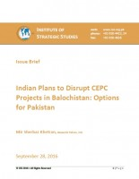 Issue Brief on Indian Plans to Disrupt CEPC Projects in Balochistan: Options for Pakistan
